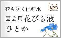 花びら液・ひとか